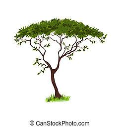 красивая, дерево, дизайн, ваш