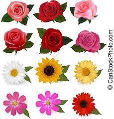 красивая, задавать, illustration., красочный, большой, flowers., вектор