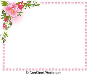 красивая, задний план, орхидея