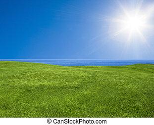 красивая, зеленый, пейзаж