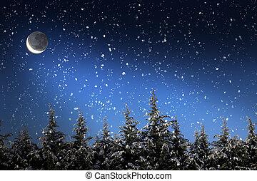 красивая, зима, снег, trees, ночь, covered, пейзаж