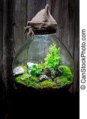 красивая, концепция, банка, дождь, лес, земля, спасти
