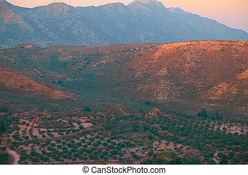 красивая, коричневый, восход, hills, пейзаж