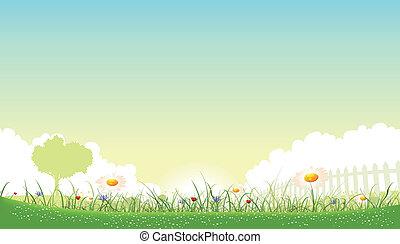красивая, лето, сад, весна, poppies, иллюстрация, seasons, cornflowers, цветы, маргаритка, или, пейзаж