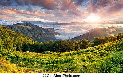 красивая, лето, mountains., пейзаж, восход