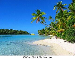красивая, остров, aitutaki, один, фут, готовить, islands, пляж