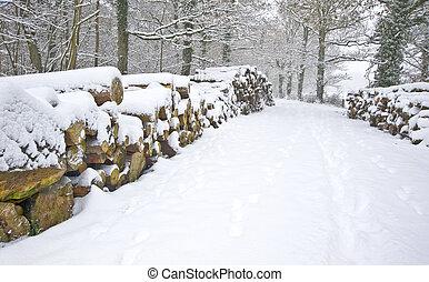 красивая, порез, stacked, зима, снег, глубоко, место действия, девственница, лес, свежий, дорожка, sides, лесоматериалы