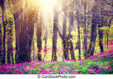 красивая, природа, trees., blooming, парк, трава, зеленый, весна, дикий, цветы, пейзаж