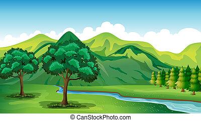 красивая, река, пейзаж