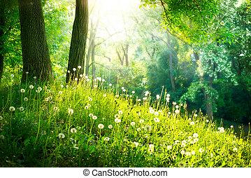 красивая, landscape., весна, nature., trees, зеленый, трава