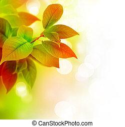 красивая, leaves