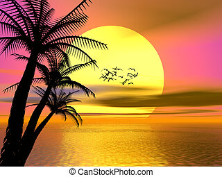 красочный, закат солнца, восход, тропический