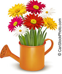 красочный, can., весна, полив, иллюстрация, вектор, оранжевый, свежий, цветы