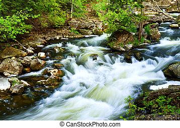 леса, через, река