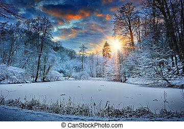 лес, над, закат солнца, озеро, зима