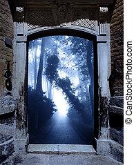 лес, портал, туманный, древний