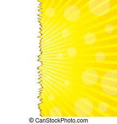 лето, абстрактные, порванный, солнечный свет, иллюстрация, вектор, задний план