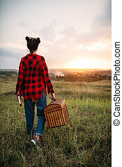 лето, женщина, пикник, поле, корзина, симпатичная