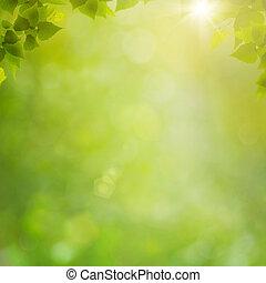 лето, натуральный, абстрактные, backgrounds, bokeh, лес, листва, свежий
