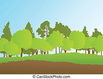 лето, пейзаж, вектор, лес, задний план