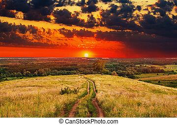 лето, природа, дерево, небо, поле, пейзаж, сельский, зеленый, восход, дорожка, закат солнца, трава, дорога