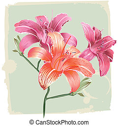 лили, цветы, гранж, задний план