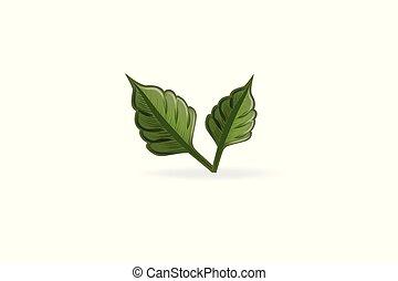 логотип, вектор, здоровье, природа, лист