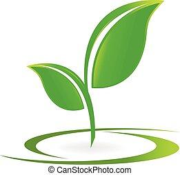 логотип, вектор, здоровье, leafs, природа