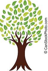 логотип, вектор, зеленый, природа, дерево