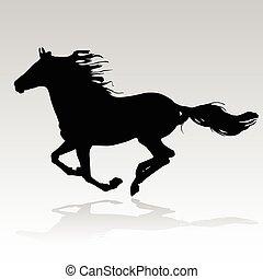 лошадь, бег