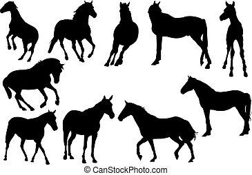 лошадь, вектор, силуэт, иллюстрация