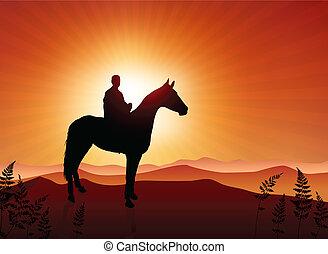 лошадь, закат солнца, задний план, человек