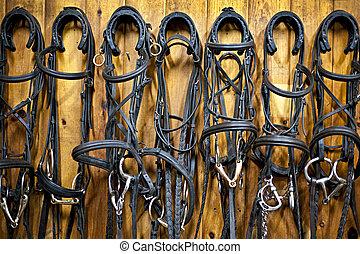 лошадь, подвешивание, bridles, стабильный