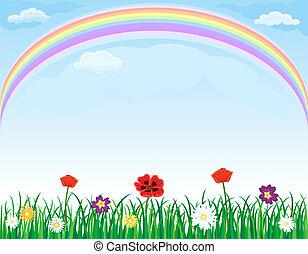 луг, над, радуга, цветы, трава