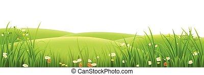 луг, трава, зеленый, цветы