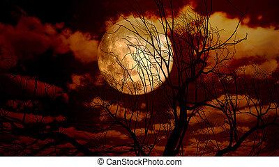 луна, дерево, ночь