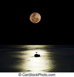 лунный свет