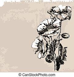 мак, цветы, гранж, задний план