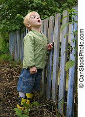 мальчик, через, looks, забор