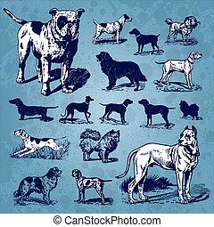марочный, задавать, dogs, (vector)