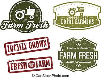 марочный, сельское хозяйство, рынок, свежий
