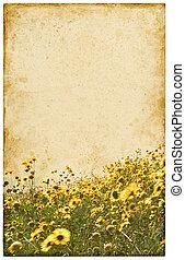 марочный, цветы, старый