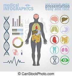 медицинская, infographics