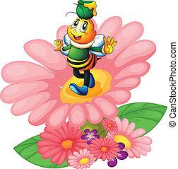 мед, цветы, пчела