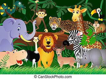 милый, джунгли, животное, мультфильм