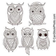 милый, задавать, owls.