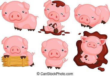 милый, pigs