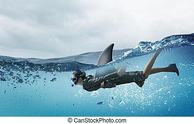 мир, акула, бизнес