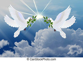 мир, doves