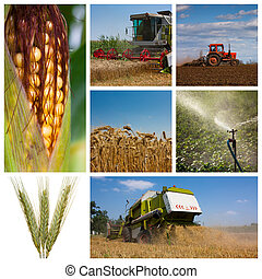 монтаж, сельское хозяйство